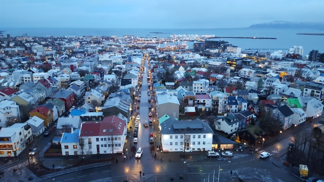 A winter morning in Reykjavik from Hallgrimskirkja.