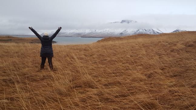 Videy Island near Reykjavik, Iceland.