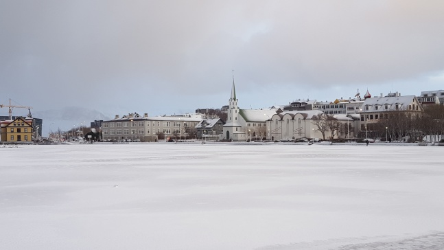 A snowy day in Reykjavik, Iceland.