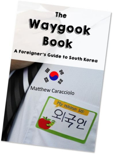 the waygook book front cover sideways